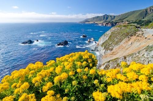 2014-01-23-Monterey.jpg
