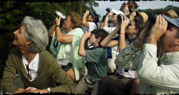 2014-01-28-hondurasbirdwatchers.png