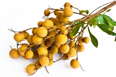 What Is the Difference Between the Lychee, Rambutan and