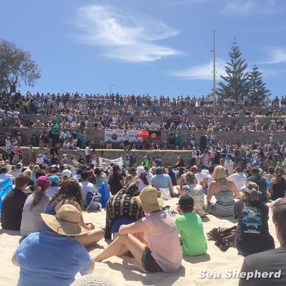 2014-01-29-WesternAustraliaSharkProtestSeaShepherdEarthDrReeseHalter