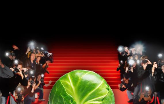 2014-01-30-CelebritySprout.jpg