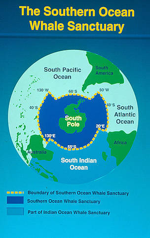 2014-01-31-SouthernOceanWhaleSanctuaryEarthDrReeseHalter