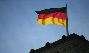 2014-02-03-germanflaggardels.jpg