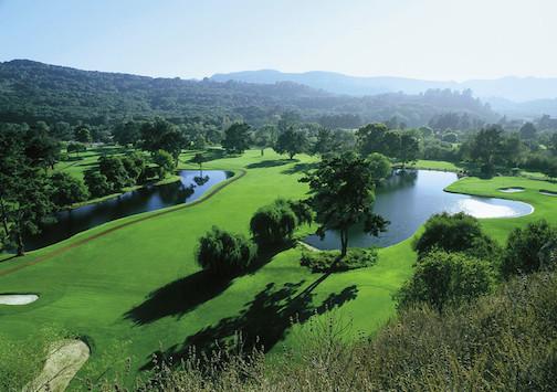 2014-02-05-GolfFairwayL.jpg