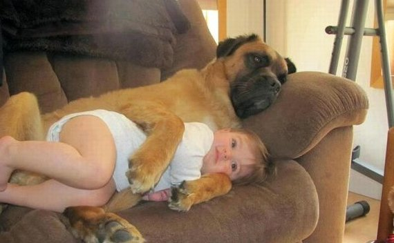 2014-02-08-babygirlanddogsnuggling.jpg
