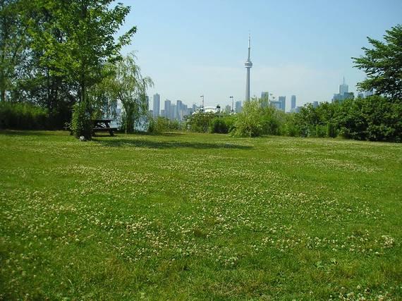 2014-02-09-TorontoField.jpg