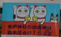 2014-02-11-imado4.jpg