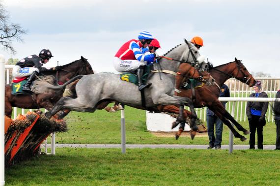 2014-02-14-jockeyandhorse.jpg