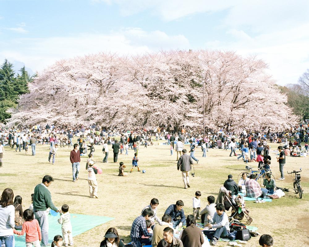 2014-02-18-holiday_060.jpg