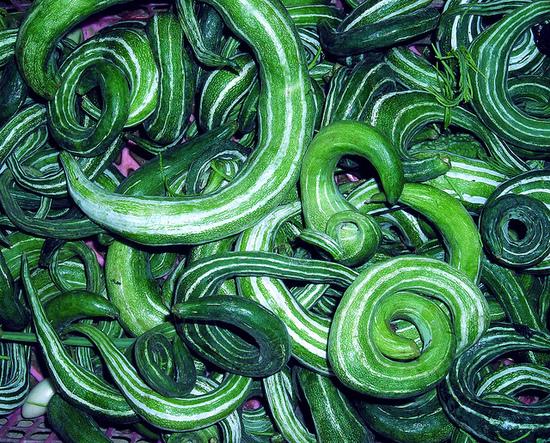 2014-02-24-cucumbers2.jpg