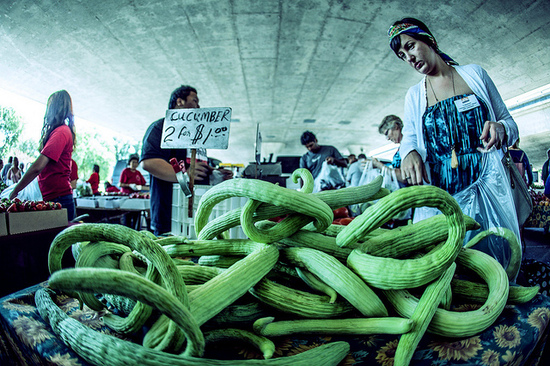 2014-02-24-cucumbers3.jpg