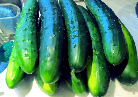 2014-02-24-cucumbers4.jpg