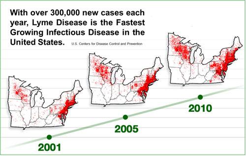 2014-02-25-cmrubinworldLyme_Disease_Progression_Map__US_BIOLOGIC_copy500.jpg