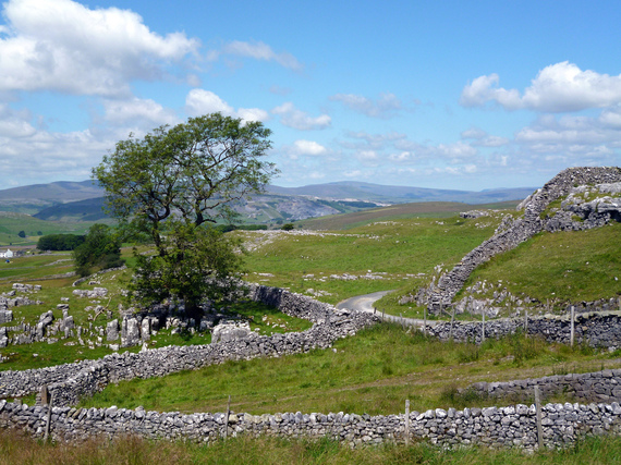 Stone walls in the Yorkshire dales
