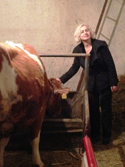 2014-03-07-HavaKosovowithCows.jpg