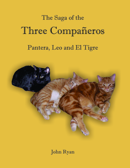 2014-03-09-ThreeCompaneros6EarthDrReeseHalter.jpg