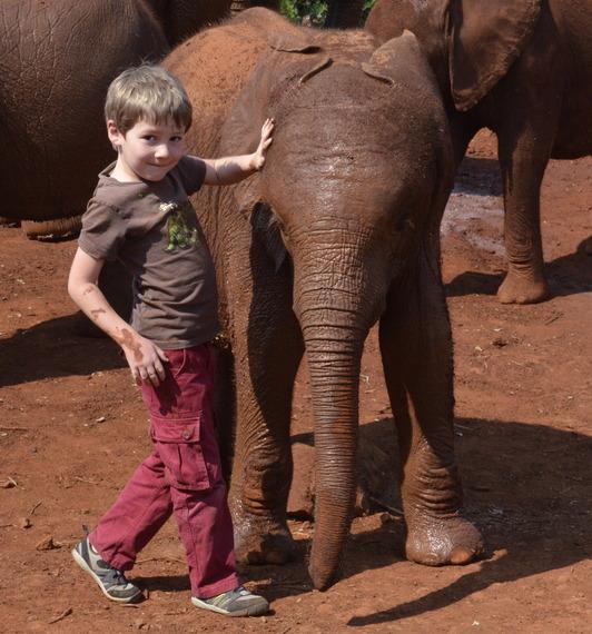 2014-03-11-elephantphoto.jpg