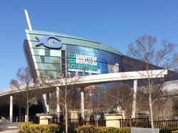 2014-03-15-Aquarium.JPG