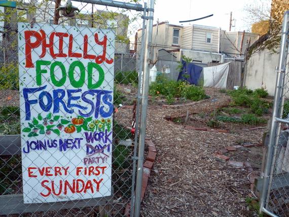 Edible Landscaping Urban Food Gardens That Look Great