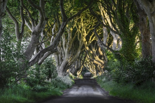 2014-03-17-GameofThronesIreland540x360.jpg
