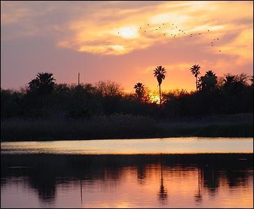 2014-03-19-bentsen_sunset.jpg