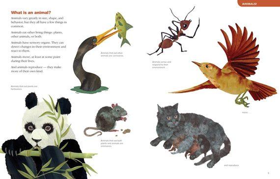 2014-03-21-animalbook1.jpg