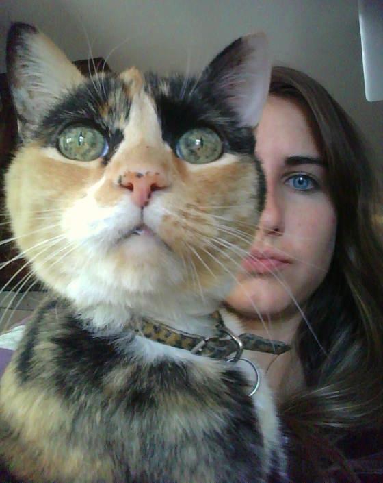 catandgirl01