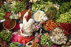 2014-03-24-fooddemocracymarketdiversity300.jpg