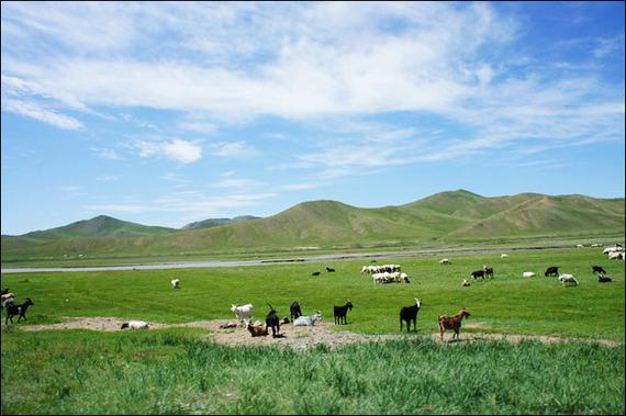2014-03-24-mongol_350.jpg