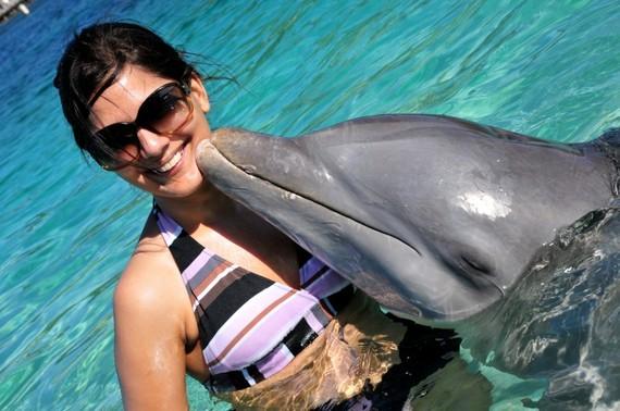2014-04-16-dolphins.jpg