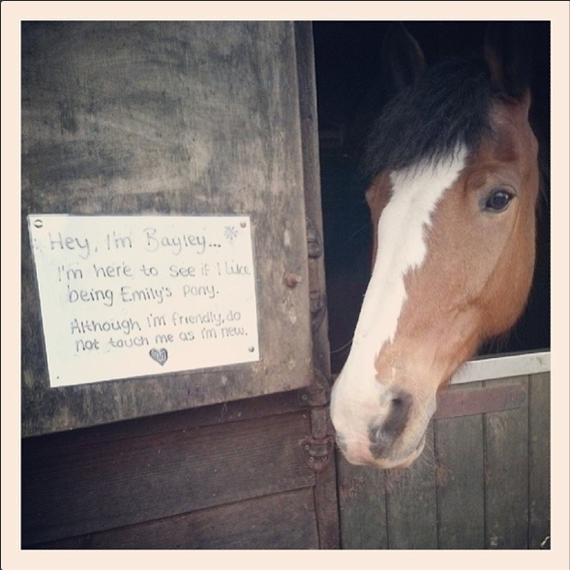 2014-04-19-horseridingYazminStellaVine2014.png