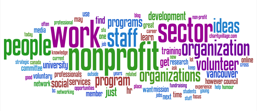 Transition and Transformation in the Nonprofit Sector ...