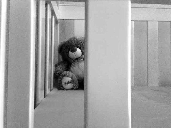2014-04-22-teddy.jpg