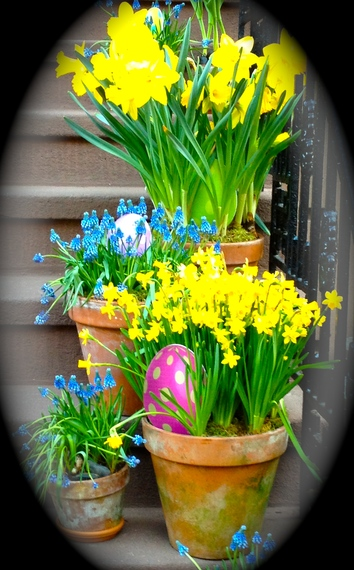 2014-04-24-IMG_3634.jpg