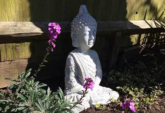 2014-04-29-buddhasunshade.jpg