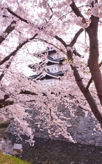 2014-05-01-Hirosaki2398x640.jpg