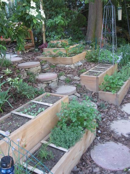 2014-05-06-Garden6.2.201116.jpg