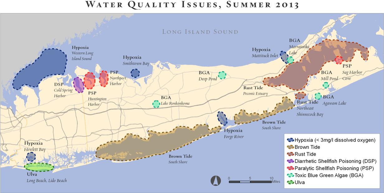 Long Island Water Quality