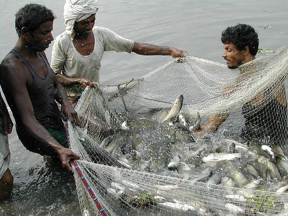 2014-05-07-fishing.jpg