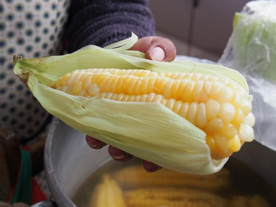 2014-05-08-Corn.jpg