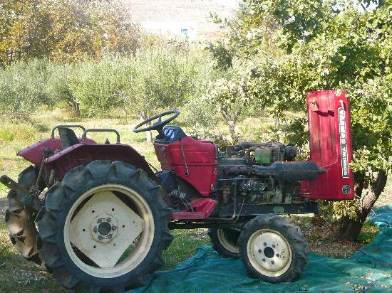 2014-05-09-theredtractor.jpg