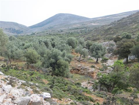 2014-05-13-GreekMainland157Custom.JPG