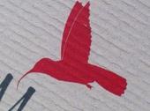 2014-05-15-hummingbird3.jpg