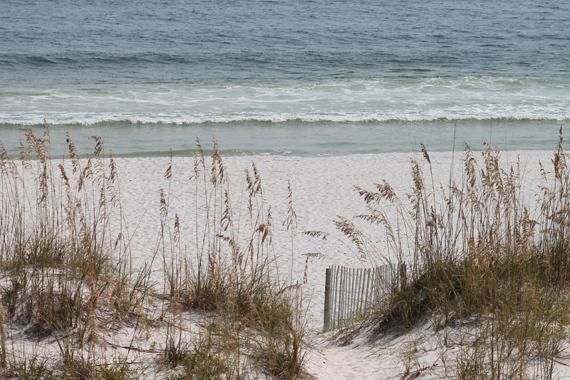 2014-05-16-beaches.JPG