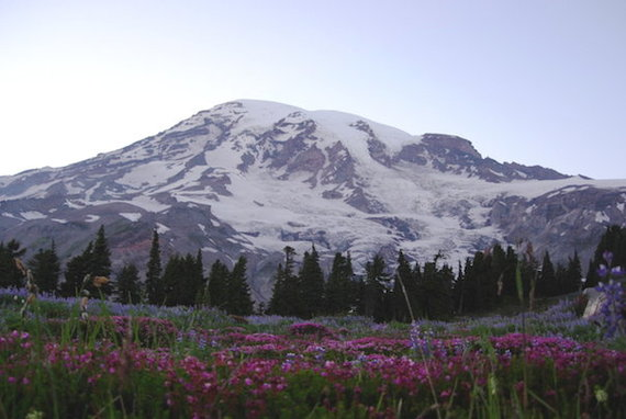 2014-05-20-_Mount_Rainier_National_P20000000005875367original.jpg