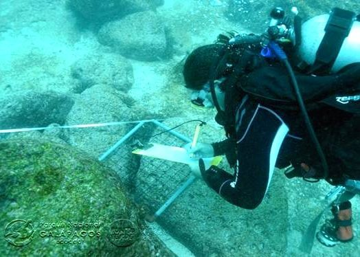 2014-05-21-divers.jpg