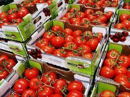 2014-05-24-tomatoes.jpeg