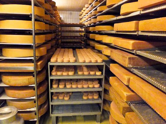 2014-05-26-Cheese.jpg