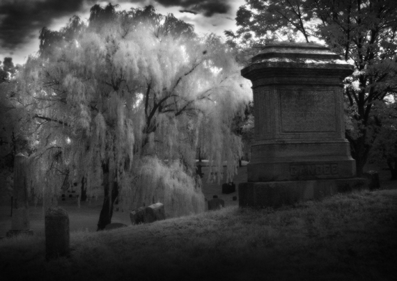 cemetery in the forest - photo #24
