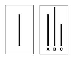 2014-05-29-conformity_experiment.jpg